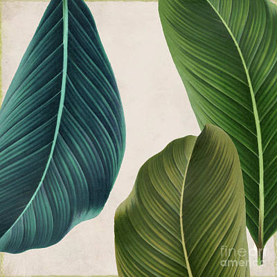 Tropical Plant Painting - Rio IIi by Mindy Sommers