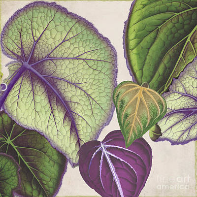Begonia Garden Painting - Rio V by Mindy Sommers