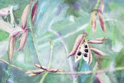 Painting - Ripe Seeds by Mandy Tabatt