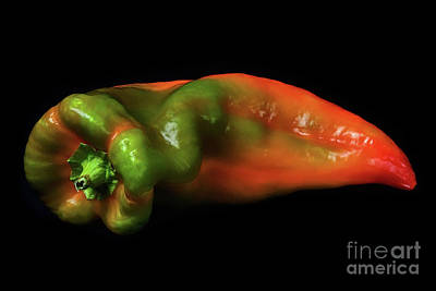 Photograph - Ripening Pepper 2 by Mark Miller