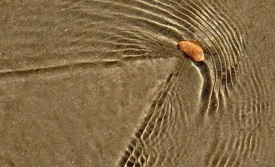 Photograph - Ripple Effect by David Shuler