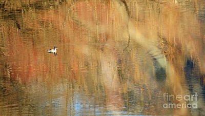 Photograph - Ripple Effect I by Michelle Twohig
