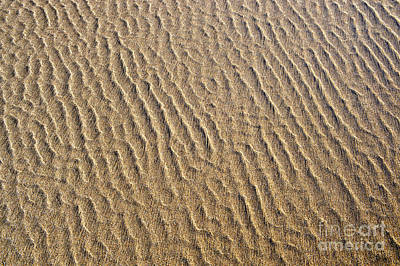 Wave Pattern Photograph - Ripples In The Sand by Tim Gainey