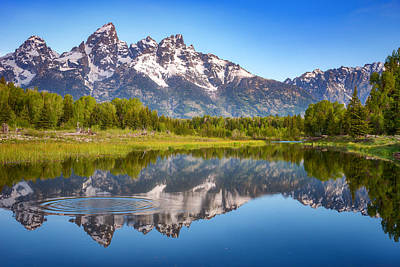 Reptiles Royalty-Free and Rights-Managed Images - Ripples in the Tetons by Darren White
