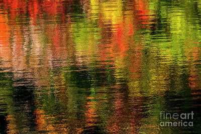 Photograph - Ripples Of Fall Color by Sonya Lang