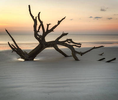 Jekyll Island Photograph - Ripples Of Sand And Driftwood by Greg Mimbs