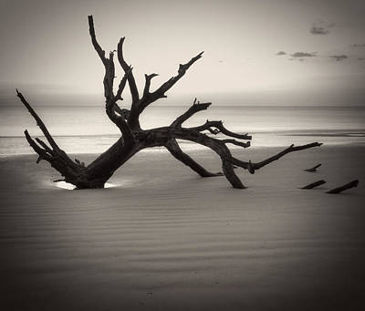 Jekyll Island Photograph - Ripples Of Sand And Driftwood Sepia by Greg Mimbs