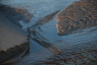 Photograph - Ripples Or Aligator by Renee Holder