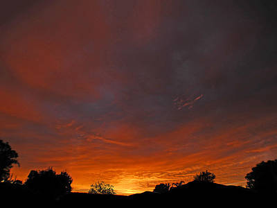 Photograph - Rise by Mark Blauhoefer