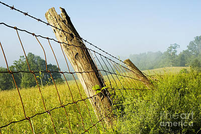 Rising Mist With Falling Fence Art Print by Thomas R Fletcher