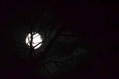 Photograph - Rising Moon 15-01 by Maria Urso