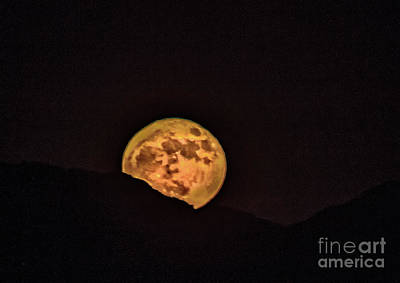 Moonlit Night Photograph - Rising Supermoon by Robert Bales