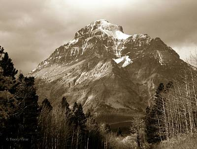 Photograph - Rising Wolf Mountain In Sepia by Tracey Vivar