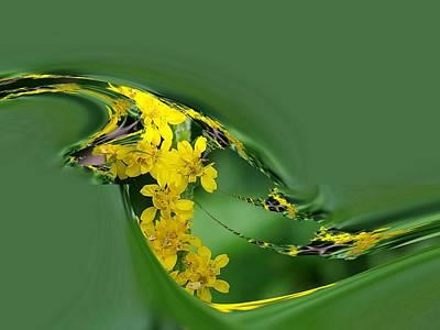Digital Art - Rita's Flower by Nancy Pauling