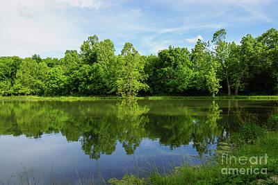 Photograph - Ritter Springs Pond by Jennifer White