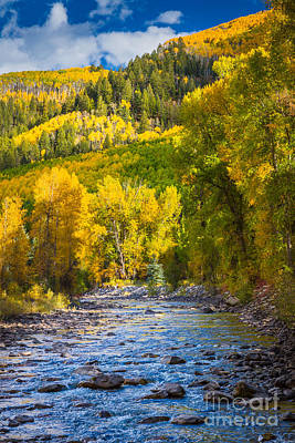 Juans Photograph - River And Aspens by Inge Johnsson