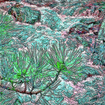 Digital Art - River And Pine - Boulder Colorado by Joel Bruce Wallach