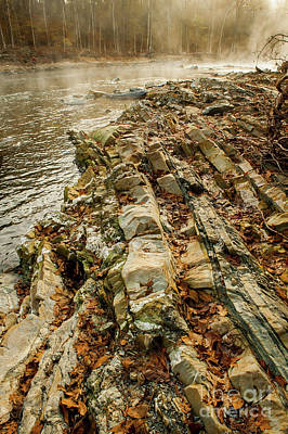Art Print featuring the photograph River Bank by Iris Greenwell