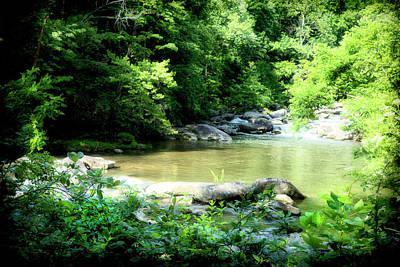 Photograph - River Bank Series Y5984 by Carlos Diaz