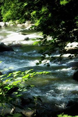Photograph - River Bank Series Y5989 by Carlos Diaz