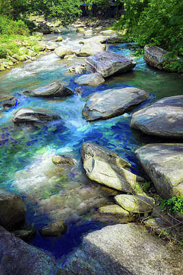 Photograph - River Bank Series Y6000 by Carlos Diaz