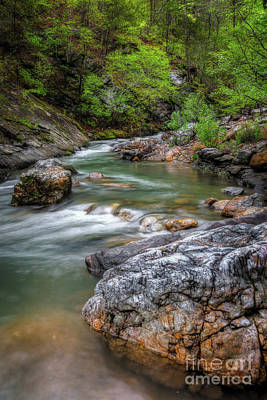 Photograph - River Beauty by Larry McMahon