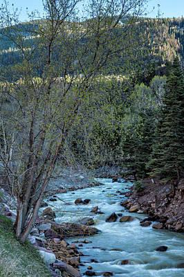 Photograph - River Below by Denise Bush