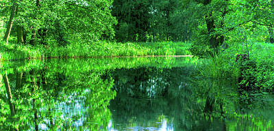 Photograph - River Bend In The Green Spreewald by Sun Travels