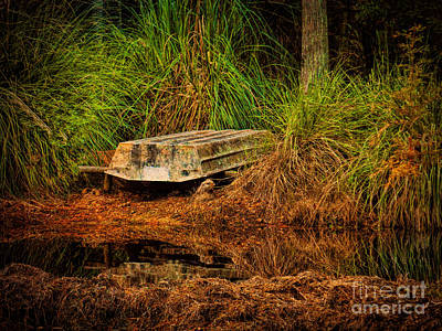 Photograph - River Boat by Dave Bosse