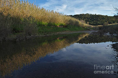 Outdoor Photograph - River By Sunset by Angelo DeVal