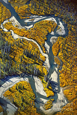 Photograph - River Channels, Aerial View, Alaska, Usa by Frans Lanting/MINT Images