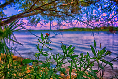 Photograph - River Color by JoeDes Photography
