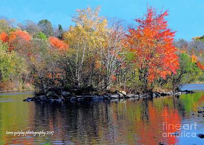 Photograph - River Color by Tami Quigley