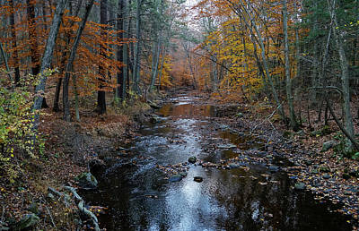 Photograph - River Colors  by Jeffrey Friedkin