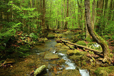 Photograph - River Crossing On The Maryland Appalachian Trail by Raymond Salani III