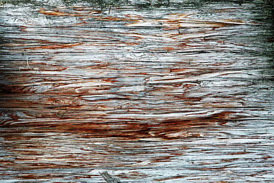 Photograph - River Dock Wood Abstract by Marilyn Hunt