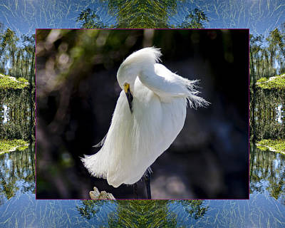 Spiritual. Geometric Photograph - River Egret by Bell And Todd
