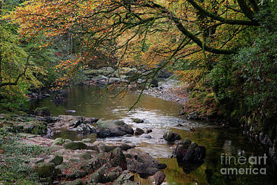 River Esk In Autumn Print by Gavin Dronfield
