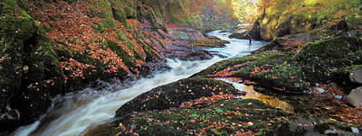 Photograph - River Esk Rapids by Dave Bowman