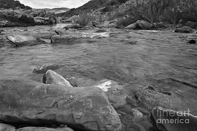 Vegetation Photograph - River Flow 3 by Angelo DeVal