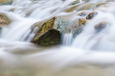 Photograph - River Flowing In Zion by John McGraw