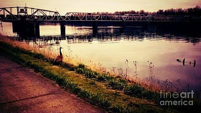Beautiful Vistas Mixed Media - River Gaze by Eisen Laucik