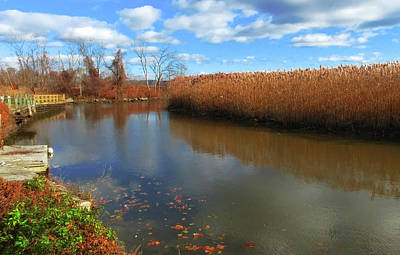 Photograph - River Hudson Autumn Creek by Roger Bester