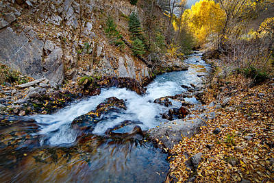 Photograph - River In Autumn by Ron Weathers