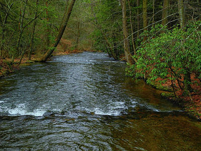 Photograph - River In Caledonia State Park Along The At by Raymond Salani III
