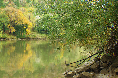 Photograph - River In Fall by Adria Trail