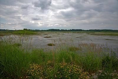 Impressionist Landscapes - River in Summer by Linda Kerkau