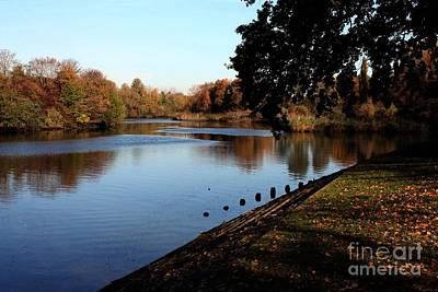 Photograph - River Itchen In Autumn by Terri Waters