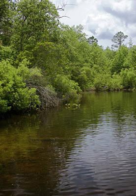 Photograph - River Landscape by Gwen Vann-Horn