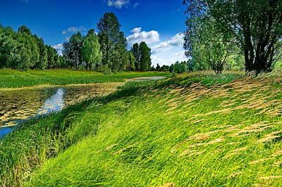 Desna Photograph - River Landscape by Oleksandr Chernii